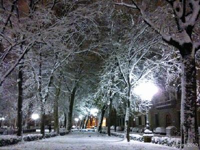 neve: piazza d'azeglio
