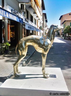 tipico cane fortemarmino in argento